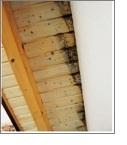 schimmelbildung dachueberstand Luftdichtigkeitsmessung (Blower Door)